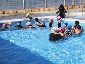 幼稚園児水泳 (3)