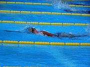 小体連水泳 (14)