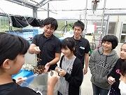 サンゴの植え付け (6)